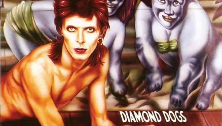 Diamond Dogs – Eerbetoon aan David Bowie + support